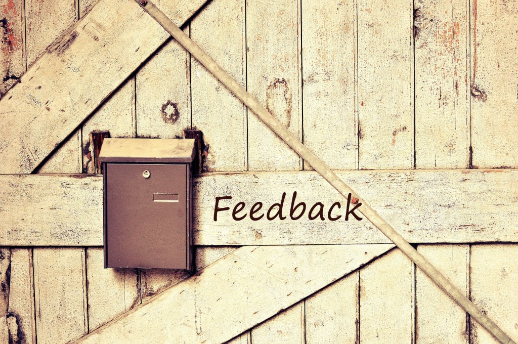 Provide and obtain feedback from your interns